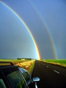 rainbow 1010report 225x300 Spiritual Hitchhiker Got Milk?